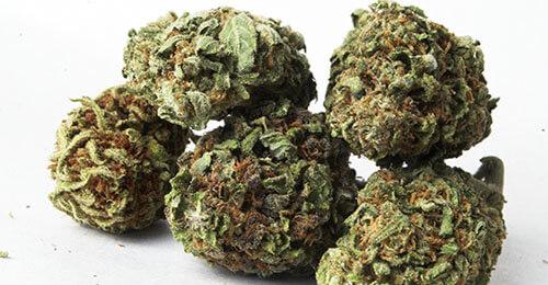 How Can Medical Marijuana Improve Your Life?
