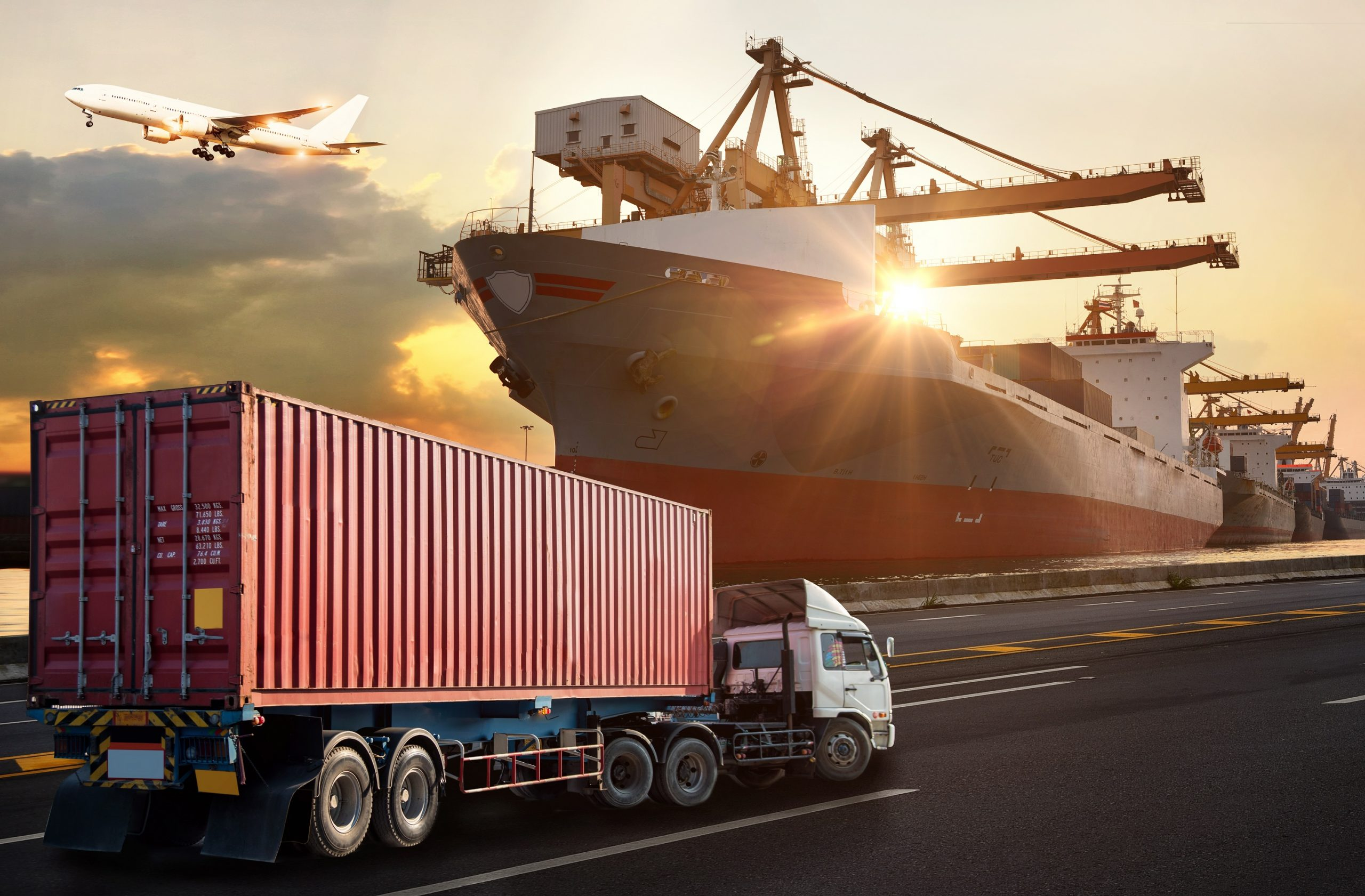 Complete The Freight Forwarding Work Brilliantly Through Various Skilled Staff's